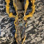 Coppia di Appliques '800 in bronzo dorato Napoleone III – 007